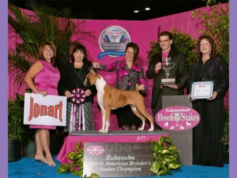 December 17, 2011 - AKC/Eukanuba Breeder Sweepstakes