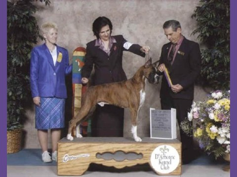 04/20/2003 -- D'Arbonne Kennel Club, BOB